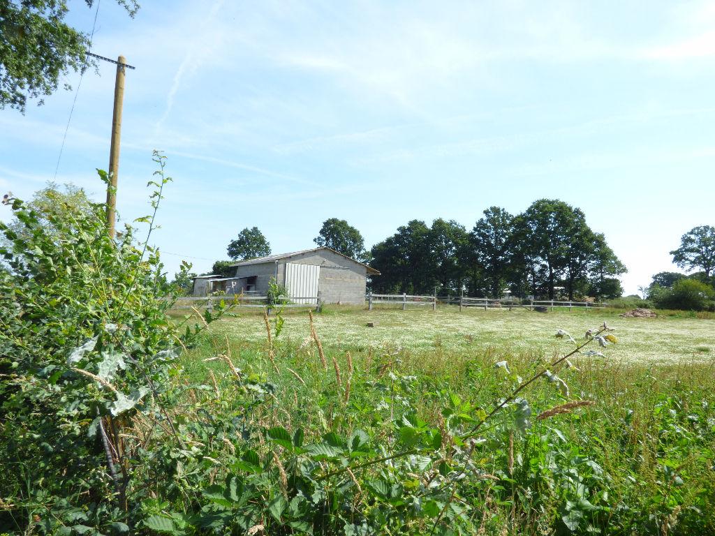 Terrain Proche Sens De Bretagne 13000 m2 avec un bâtiment en parpaing