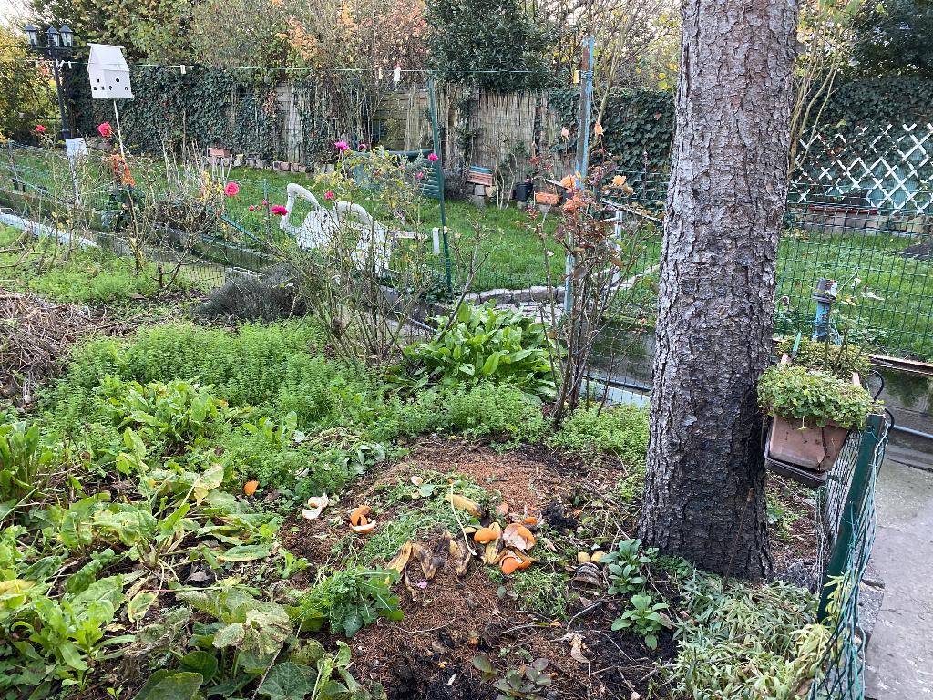 Maison avec jardin BOIS BLANCS