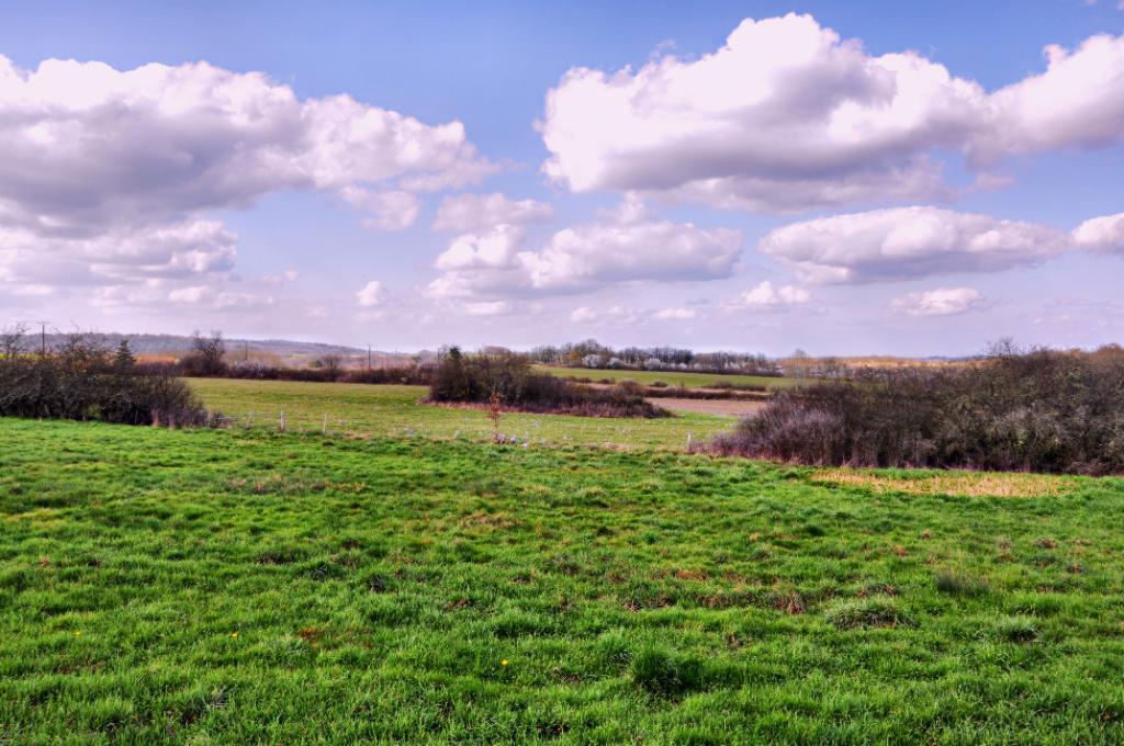 Belle grange en pierre à restaurer avec terrain