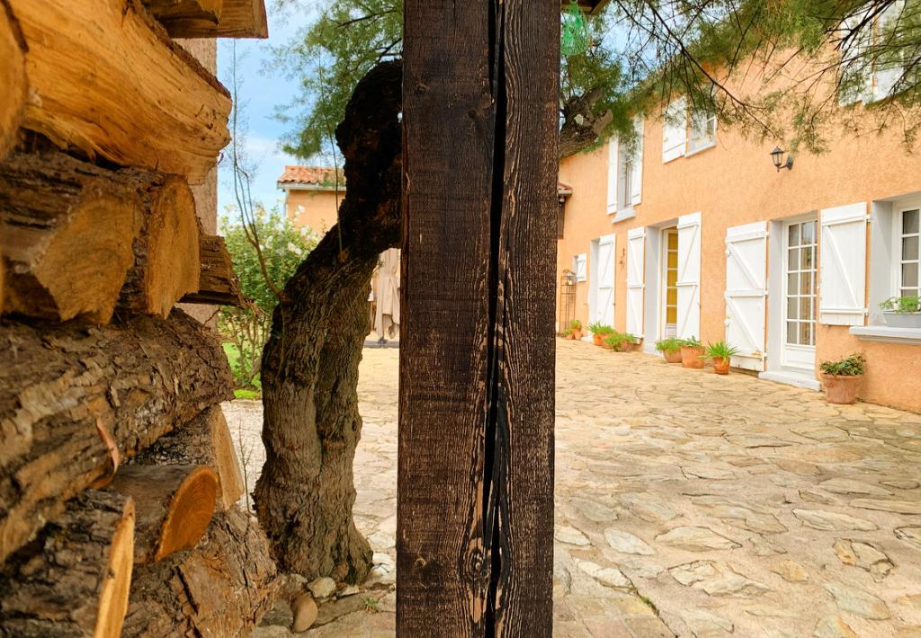 Vente maison / villa Chasse sur rhone 693000€ - Photo 3