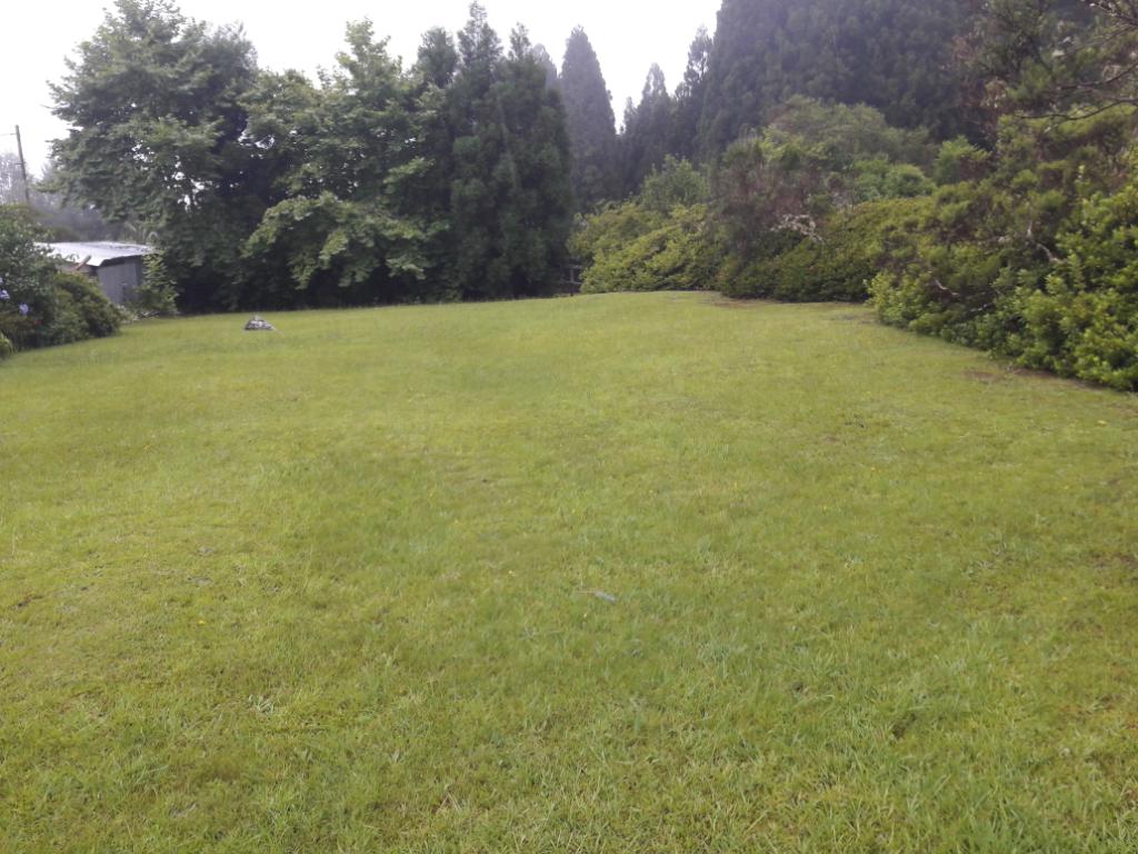 Terrain La Plaine Des Palmistes 1600 m2
