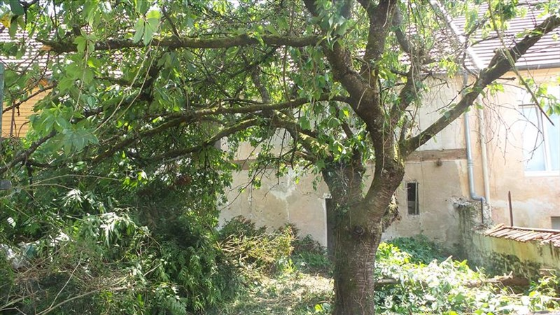 Sale house / villa La ferte sous jouarre 47 000€ - Picture 1