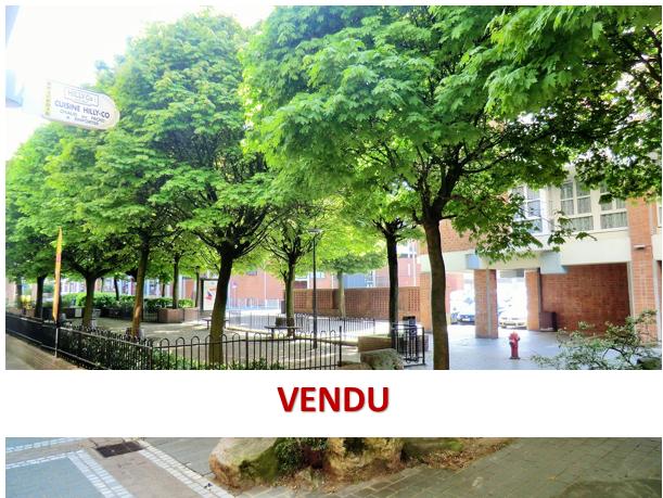 Appartement Villeneuve D'ascq type 2- 55 m2