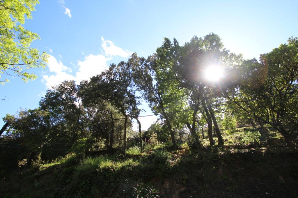 Vente terrain Sorede 118800€ - Photo 3