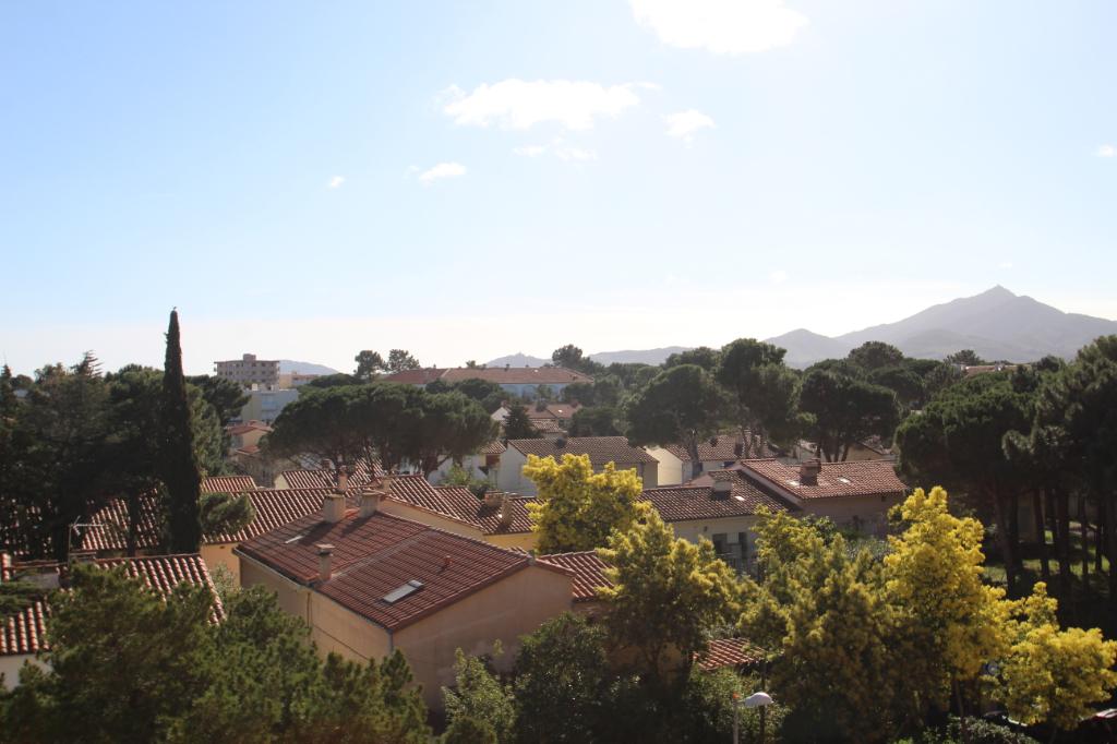 Sale apartment Argeles sur mer 90000€ - Picture 5