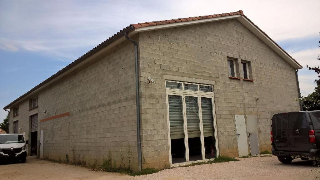 Local d'activité Toulouse 383 m2