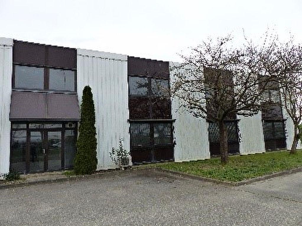A LOUER Local d'activité / Entrepôt Toulouse ZI LARRIEU