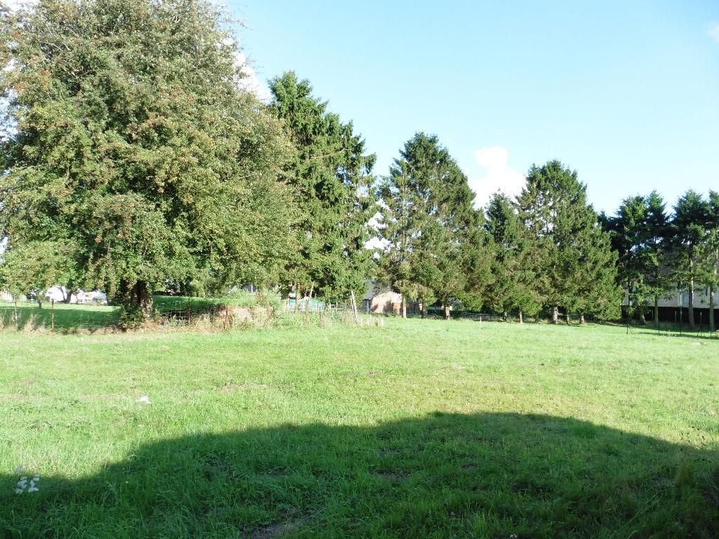 terrain en vente Crosville la vieille