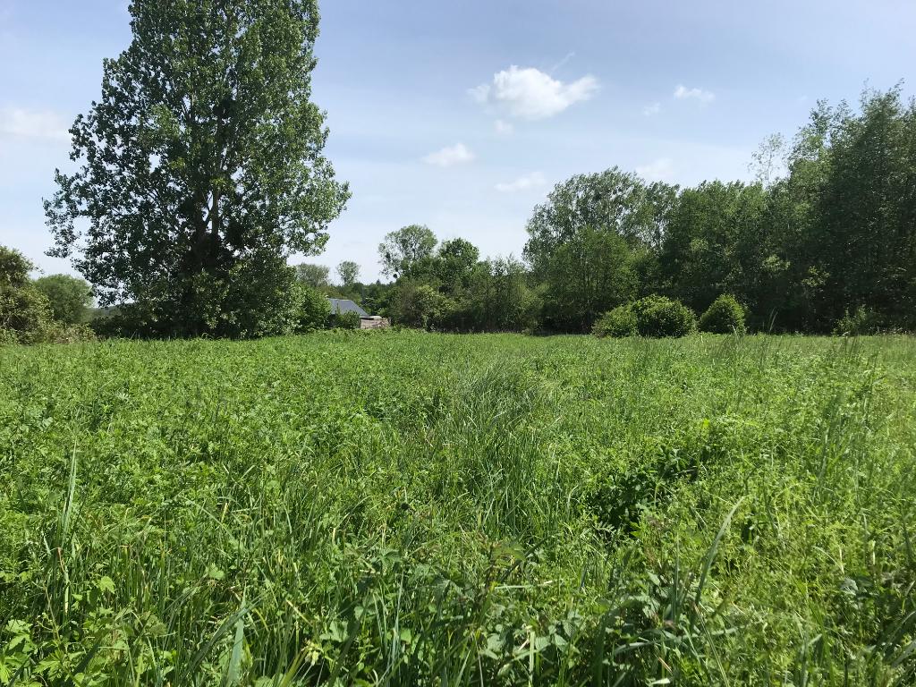 terrain en vente Aulnay sur iton