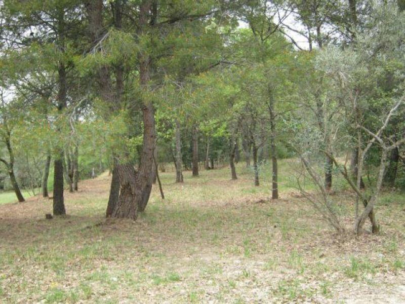 Terrain agricole vendre sur carpentras carpentras 84200 for Container sur terrain agricole