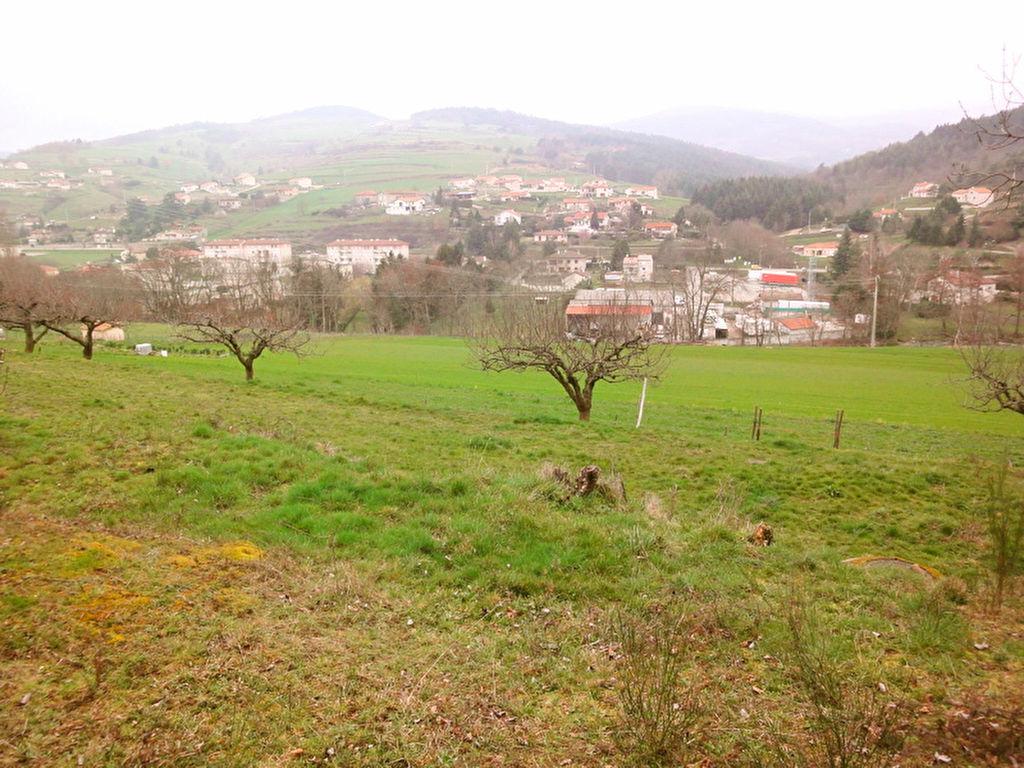 vente terrain SATILLIEU SATILLIEU 07290