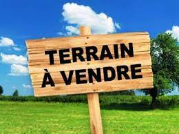 image annonce 44593415