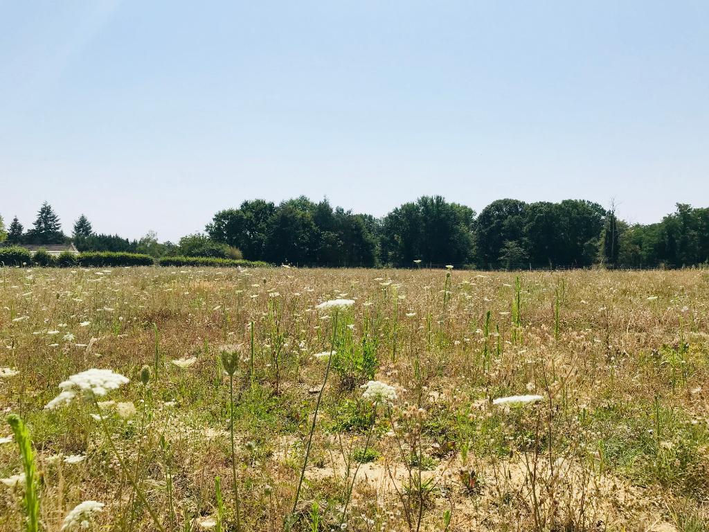 terrain proche Auxerre