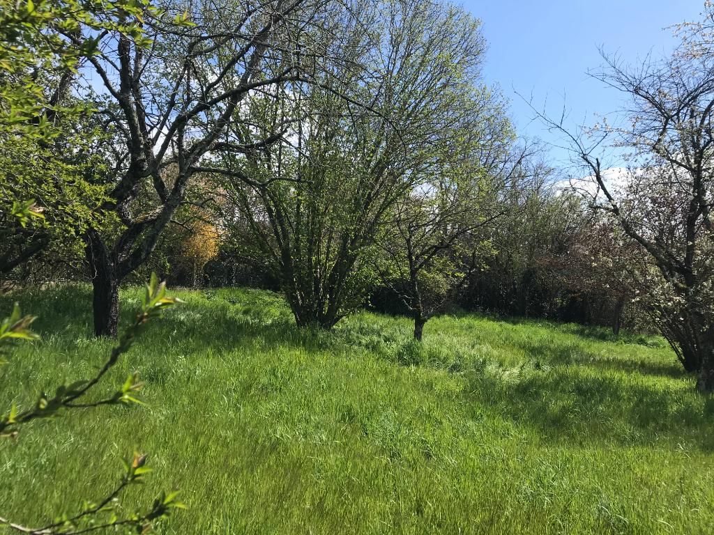 Chemilly sur Yonne