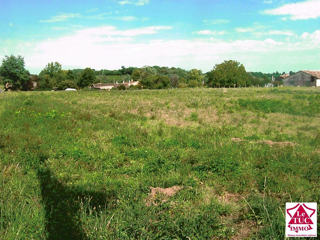 Vente Terrain BOURG BOURG 33710