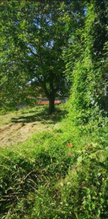 Vente terrain Mirebeau 29000€ - Photo 4