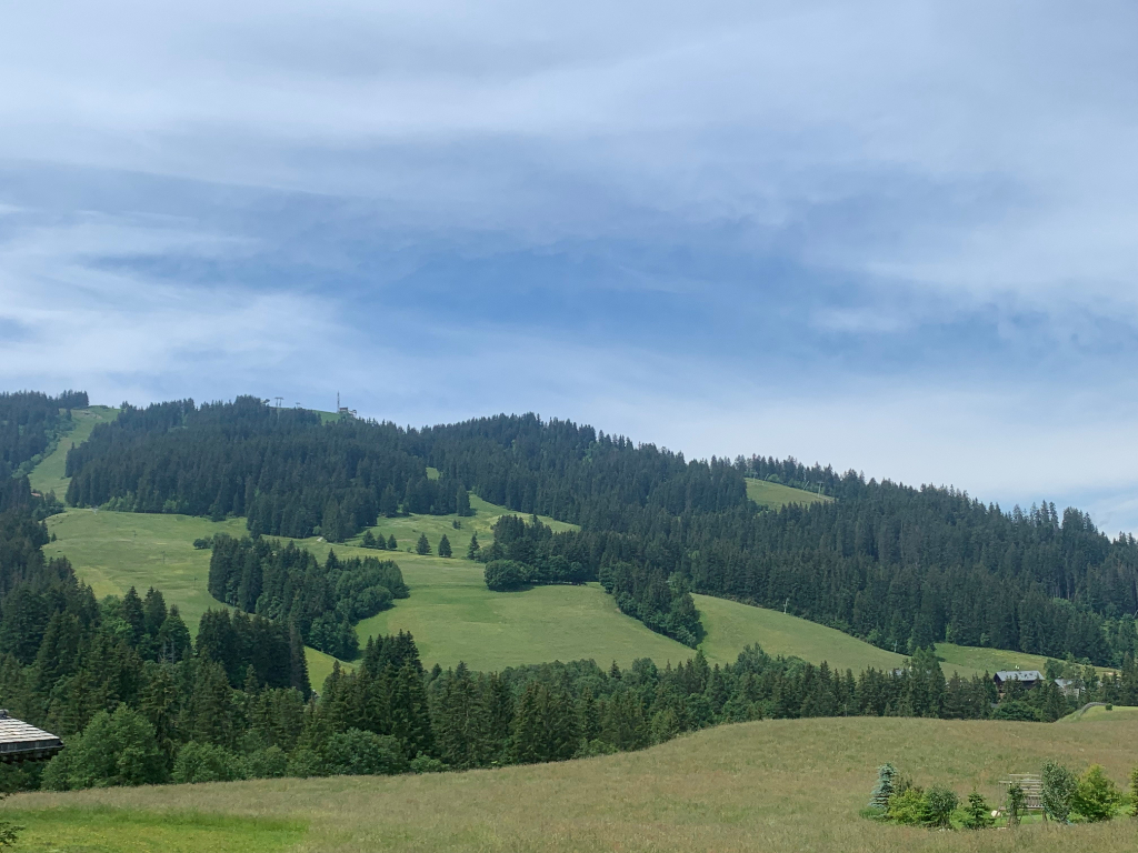 Rare building land for sale - Megève 20,000 sqm Accommodation in Megeve