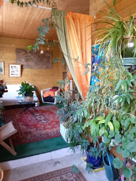Sale house / villa Saujon 535600€ - Picture 2