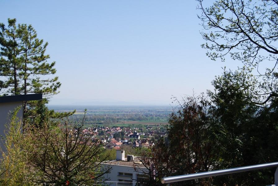 Image de présentation de Obernai- Mont National