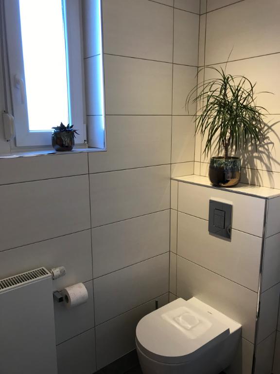Image de présentation de Maison Schaeffersheim 5 pièce(s) 185 m2