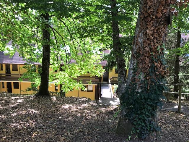 Image de présentation de Les Hauts de Klingenthal - Studio meublé - idéal pour les amoureux de la nature