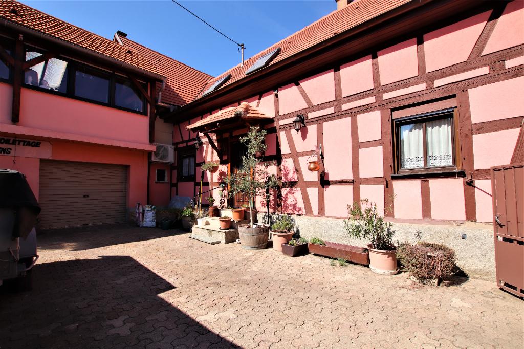 Image de présentation de Maison Schaeffersheim 5 pièce(s) 245 m2