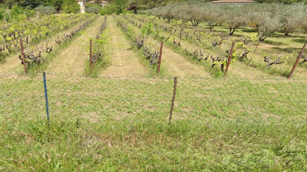 Vente terrain Aix en provence 480000€ - Photo 1