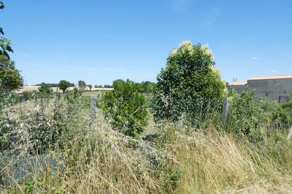 Vente terrain 17700 40000€ - Photo 2