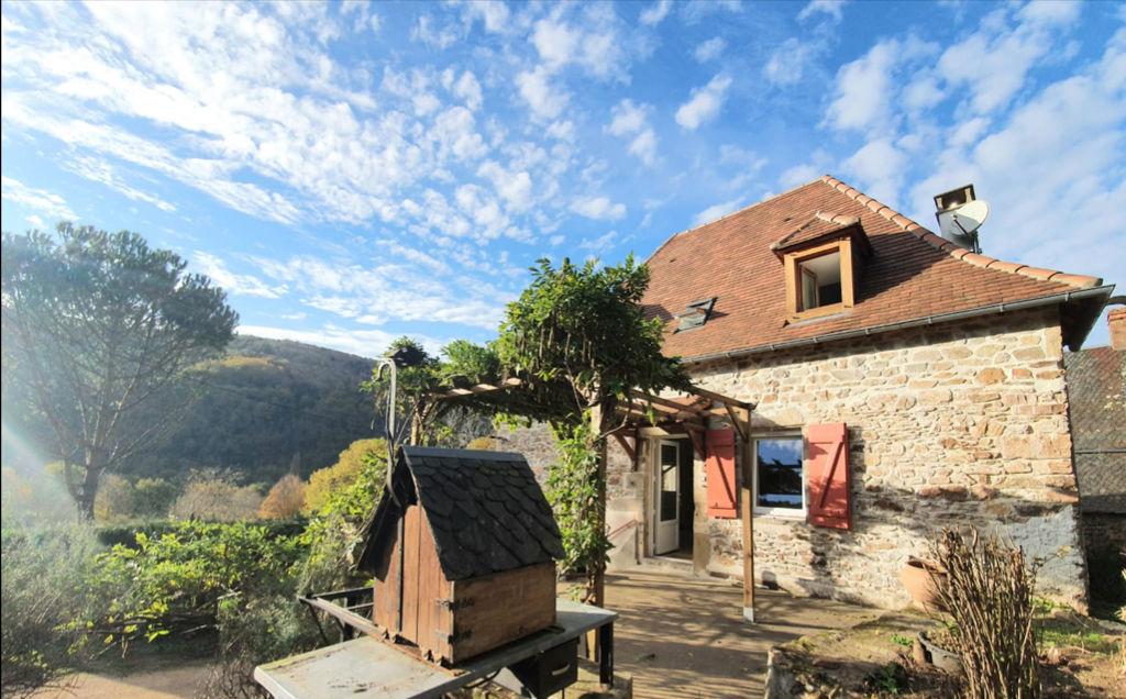 Charmante Maison rénovée à Brivezac