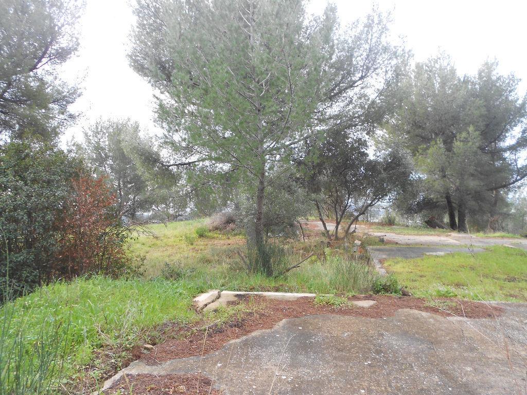 Terrain non constructible var terrain vendre for Prix du m2 non constructible