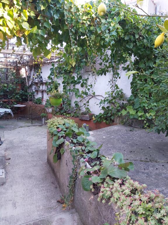Coquette maison T4 avec jardin, garage  secteur LA GAVOTTE