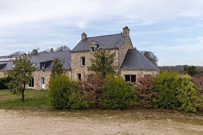Maison Trefflean 6 pièce(s) 250.03 m2