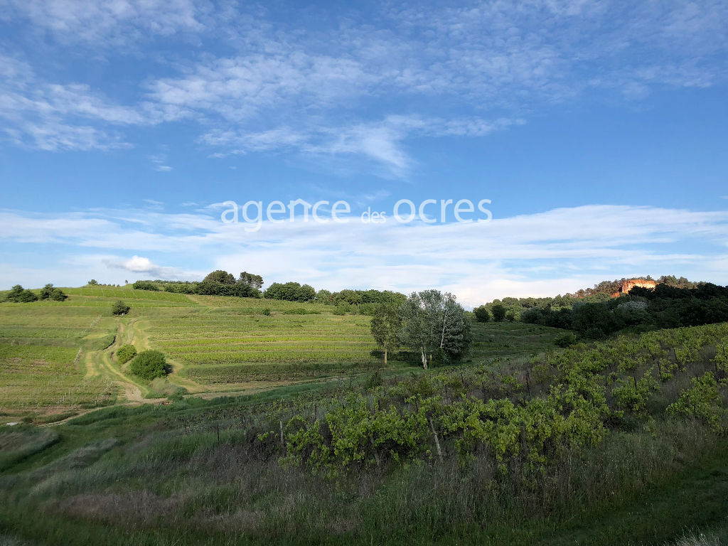 Mas Roussilon in the heart of the vineyards - 450 m2