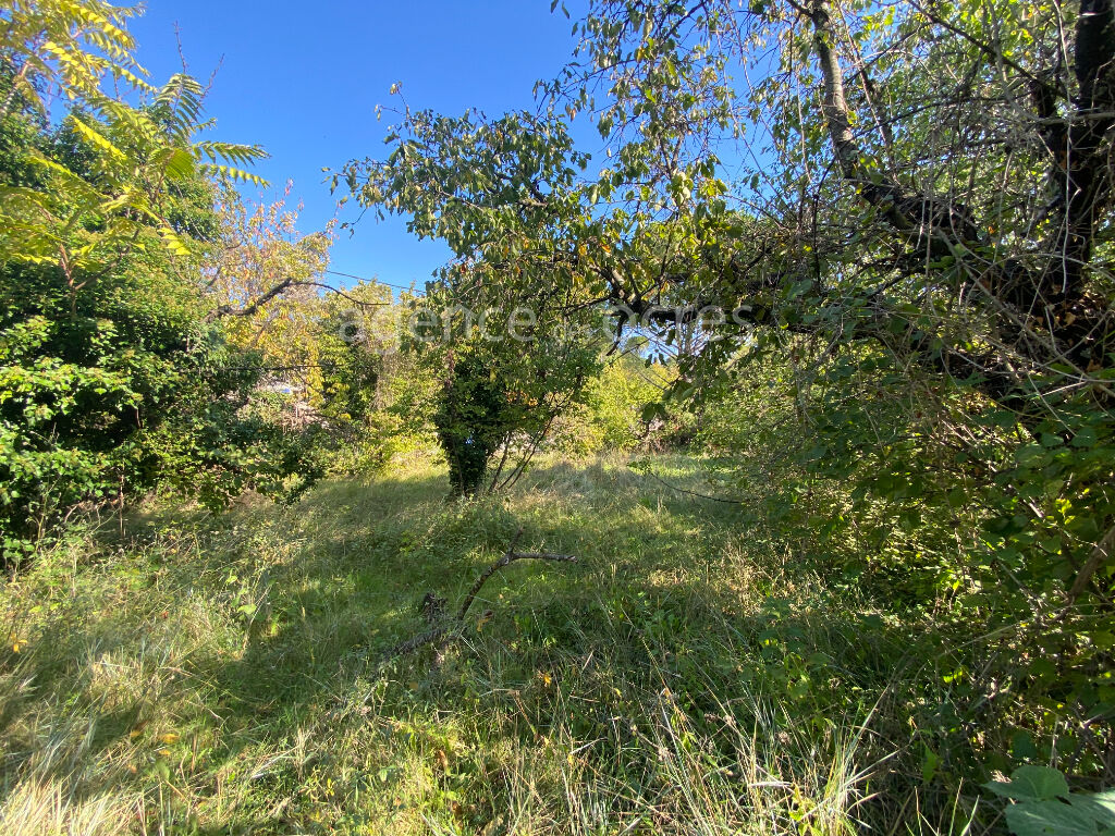 Wooded land near the center of APT area 938 m2