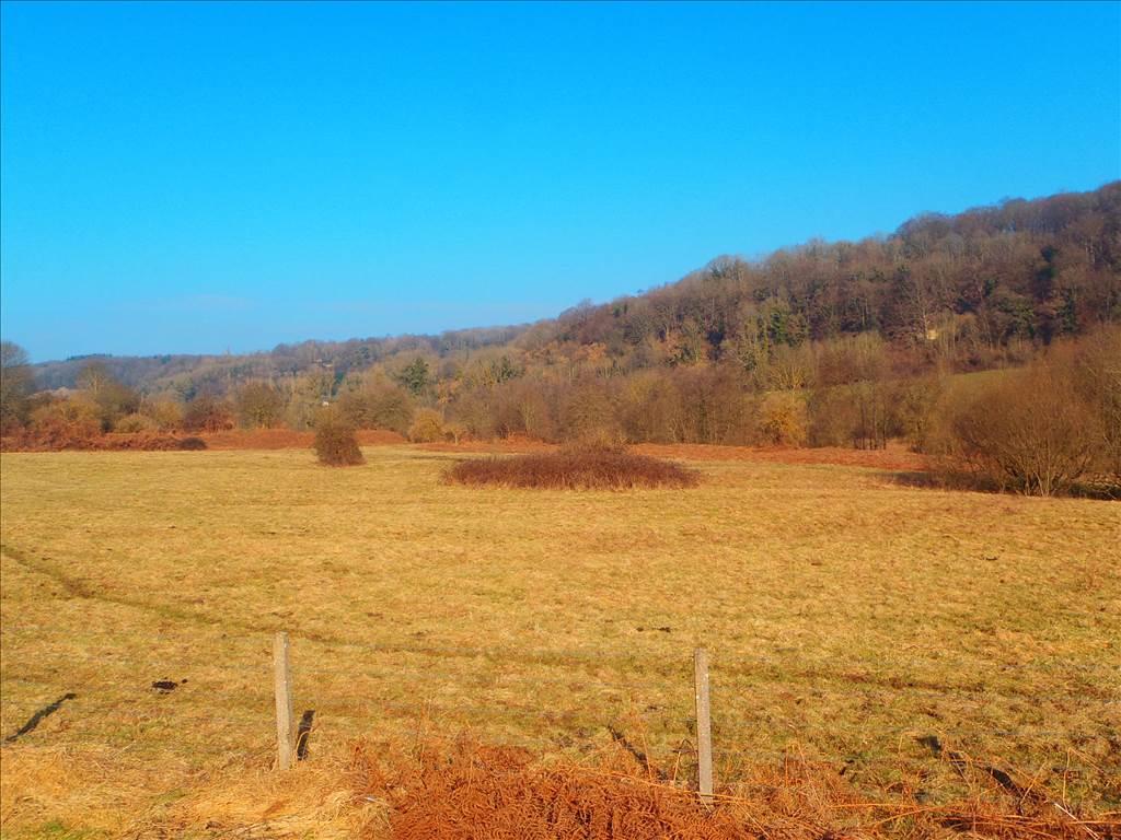 photo de Terrain de 11 hectares