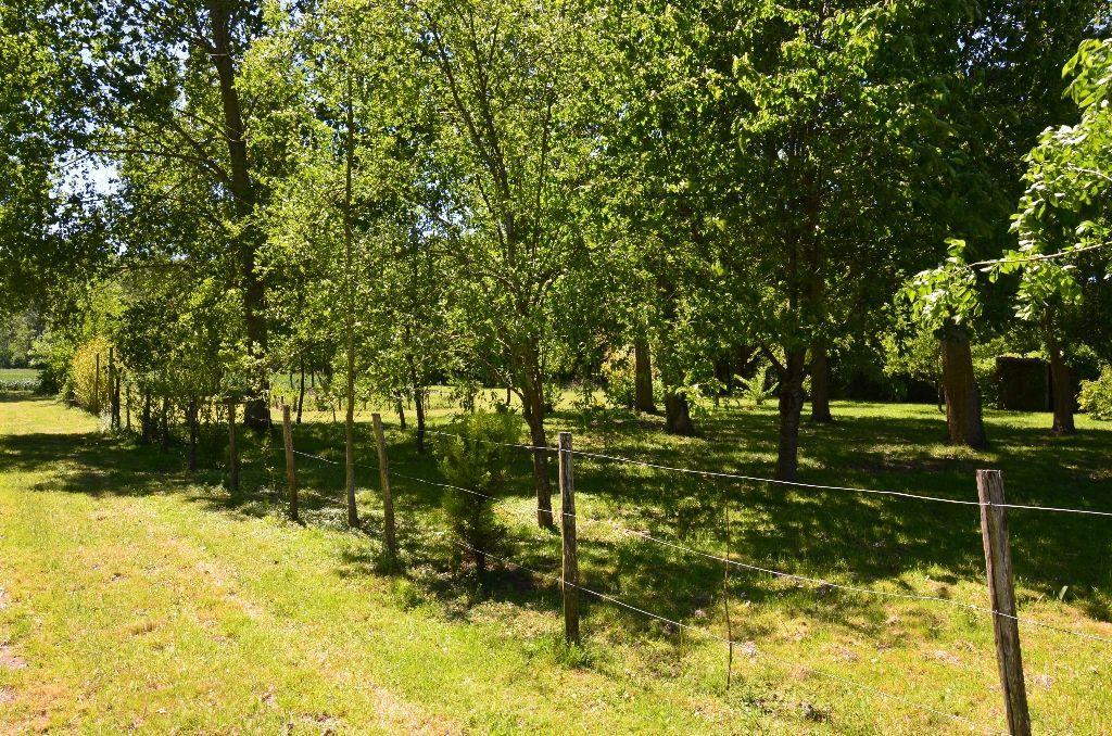 Vente terrain Montoire sur le loir 11000€ - Photo 4