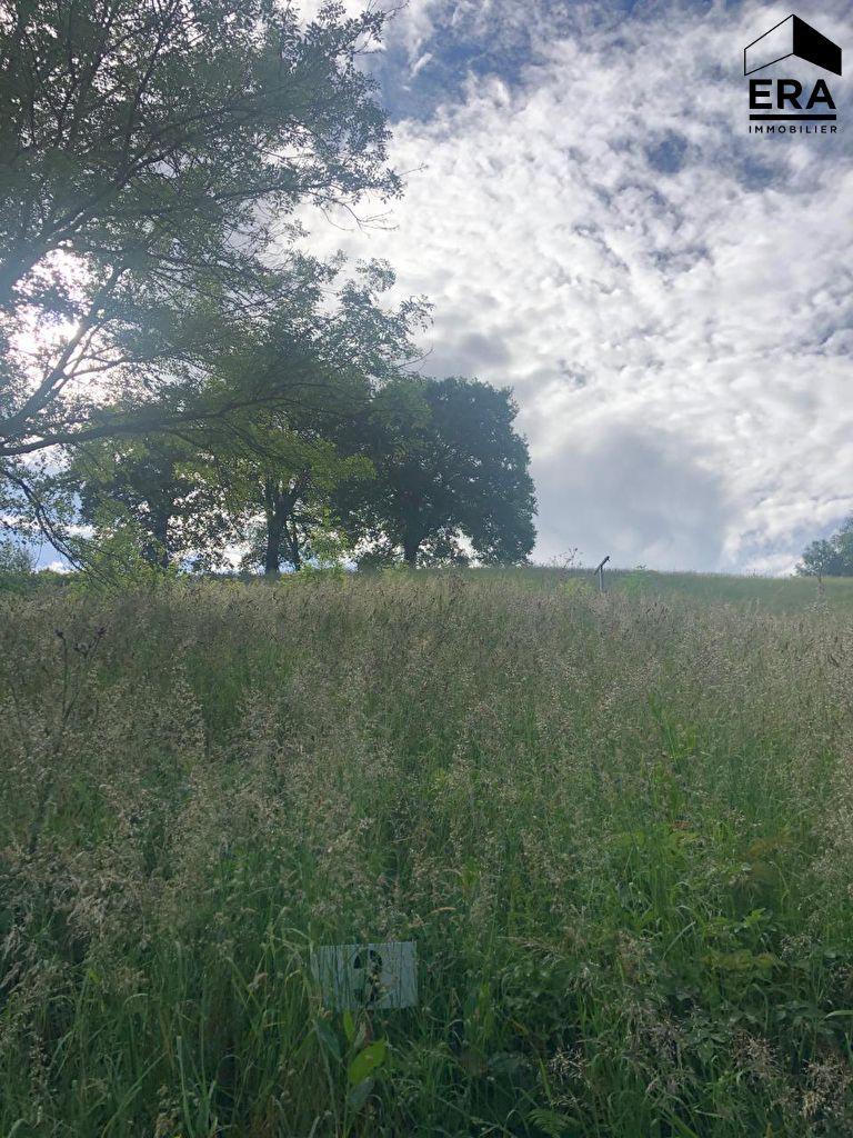 Vente terrain  à BIRIATOU - 3