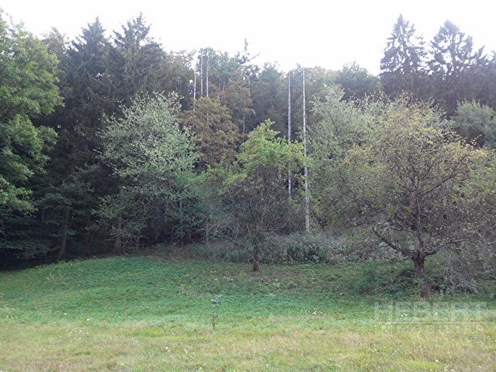 Vendita terreno Sallanches 180000€ - Fotografia 3