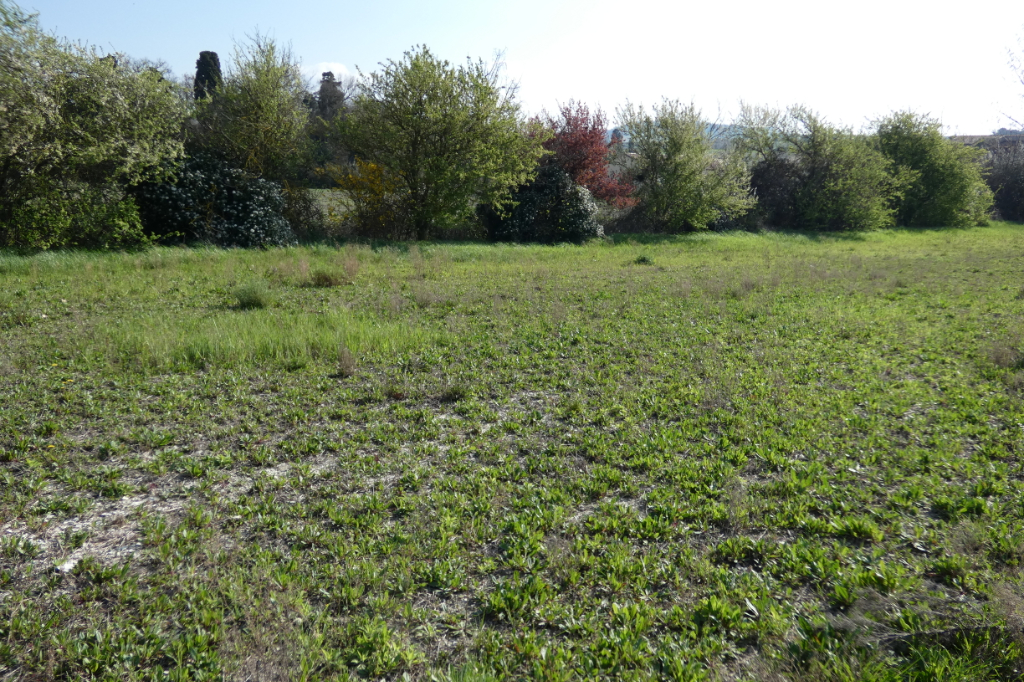 Vente Terrain de 372 m² - CASTELNAUDARY 11400 | IMOGROUP CASTELNAUDARY - IMOGROUP photo1