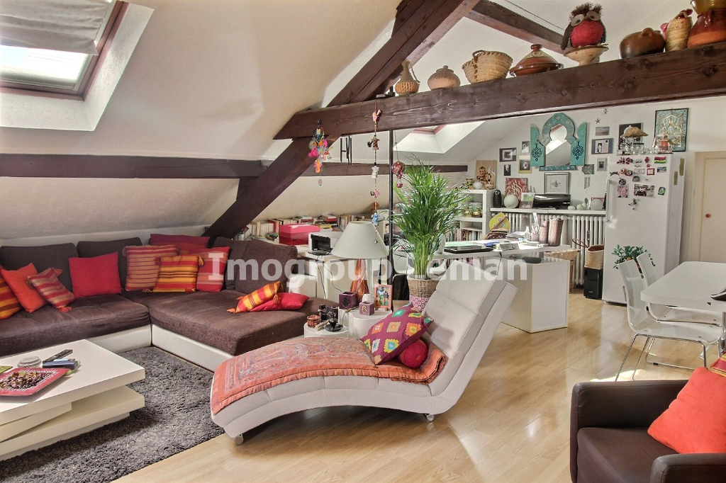 Vente Local de 22 pièces 600 m² - DOUVAINE 74140   IMOGROUP CHENE BOURG GENEVE - IMOGROUP photo12