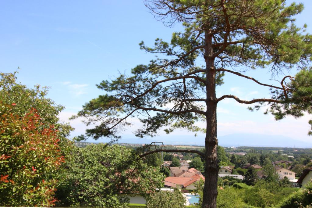 Vente Maison de 10 pièces 330 m² - DIVONNE LES BAINS 01220   IMOGROUP DIVONNE LES BAINS - IMOGROUP photo8