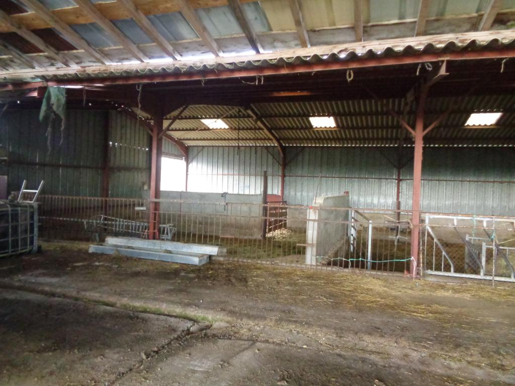 Vente Agricole Viticole de 5 pièces 130 m² - JALIGNY SUR BESBRE 03220 | IMOGROUP LAPALISSE - IMOGROUP photo6