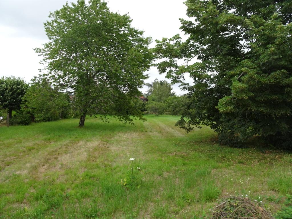 Vente Terrain de 1700 m² - LAPALISSE 03120 | IMOGROUP LAPALISSE - IMOGROUP photo2