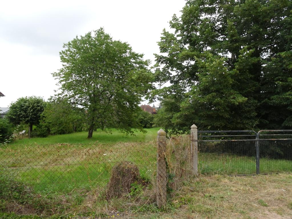 Vente Terrain de 1700 m² - LAPALISSE 03120 | IMOGROUP LAPALISSE - IMOGROUP photo3