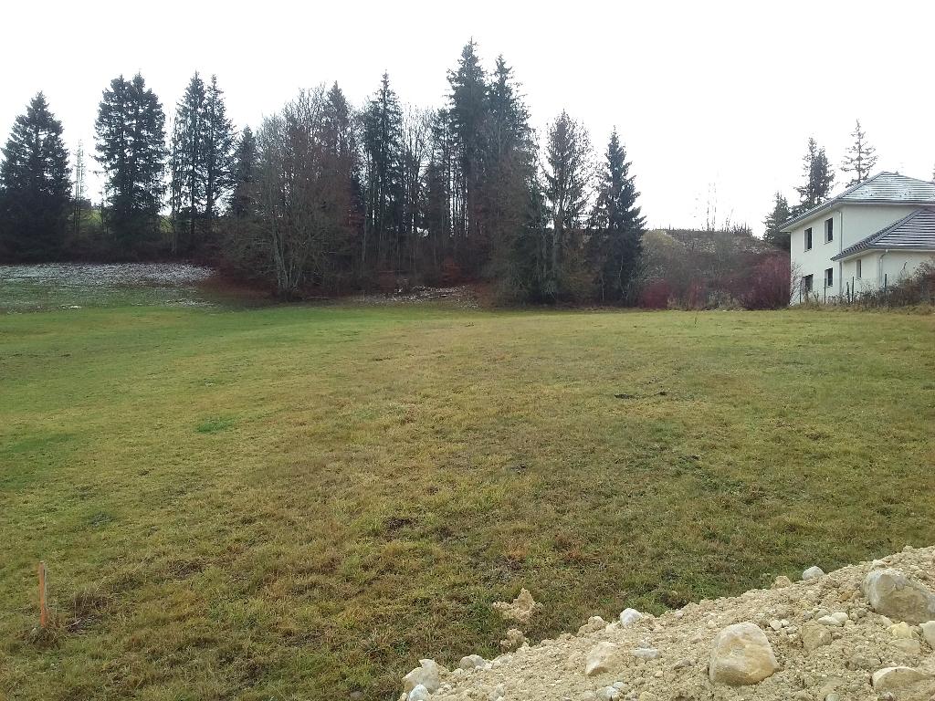 terrain 0m²  LONGEVILLES MONT D OR  - photo 3