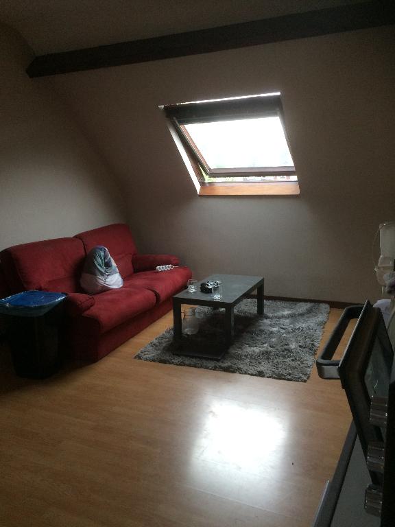 photo de Appartement 45160 1 pièce(s) 24.75 m2