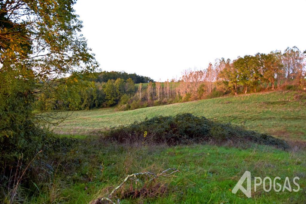 Photo Terrain  à bâtir de  5463 m2. image 1/2