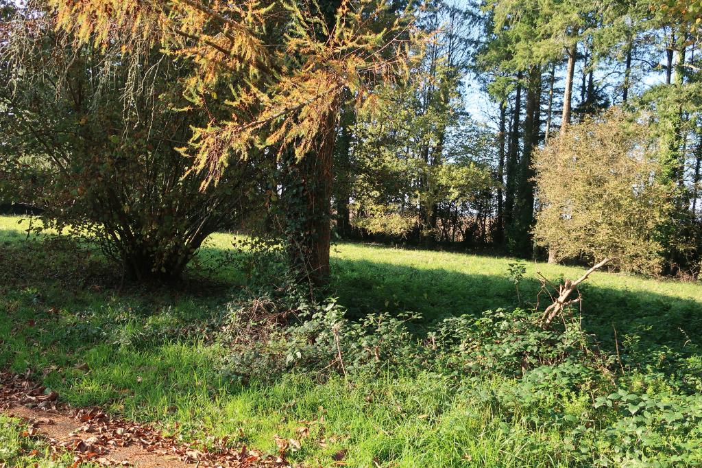 Vente maison / villa Redene 343200€ - Photo 15