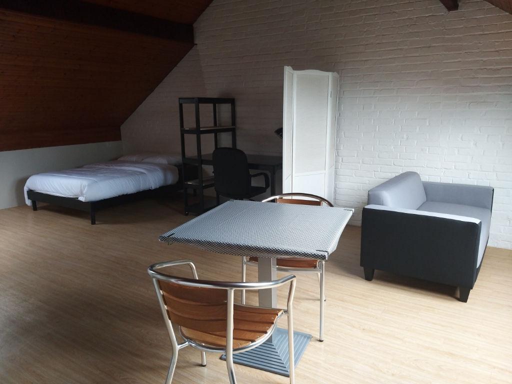 photo de Beau studio meublé entièrement rénové 27m2 et 38m2 au sol